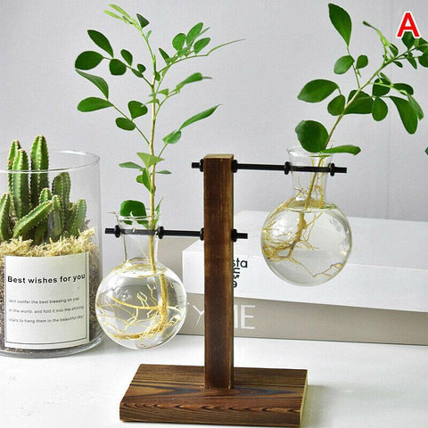 Double Bulb Glass Hydroponic Vases