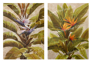 "Orange and White ""Birds of Paradise"" Pair of Giclée Reproductions"