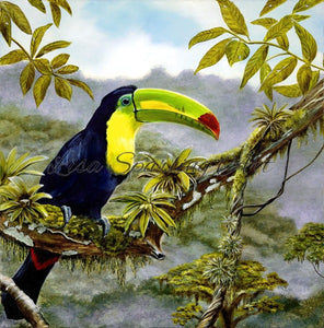 Toucan Giclée Reproduction Lisa Sparling Art painting, jungle, tropical, artwork, home decor, bird, wall art