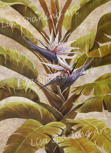 """White Bird of Paradise"" Giclée Reproduction"