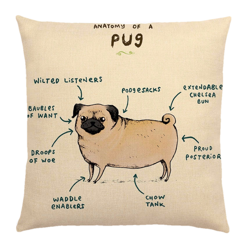 Pug Anatomy Pillow Cover