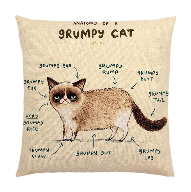 Grumpy Cat Anatomy Pillow Cover
