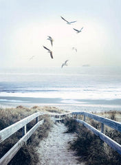 #131 Atlantic Beach Steps Call of the Wild R4620 312