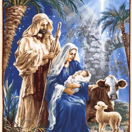 C34 Nativity Blue TT DONA-C6011 BLUE