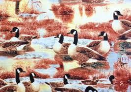 Duck, Duck, Goose! 1885-9119-524 Wilmington Prints