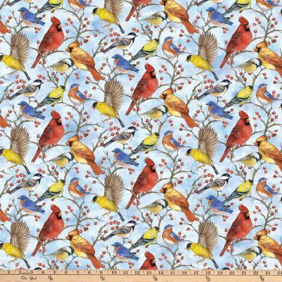 NF Bird Song Blue Multi Bird DP22432-41