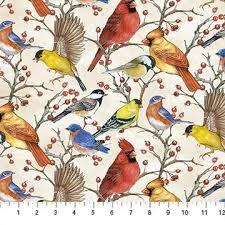 NF Bird Song Multi Bird DP22432-11