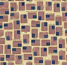 Quilting Treasures - For Love of Country 1649-24178-E