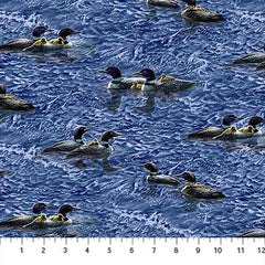 NF Loon Lake Scattered Loons DP22049-44
