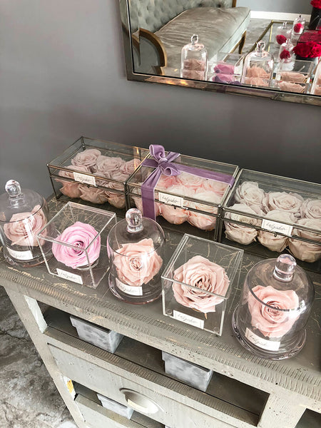 Preserved flowers for a shabby chic interiors