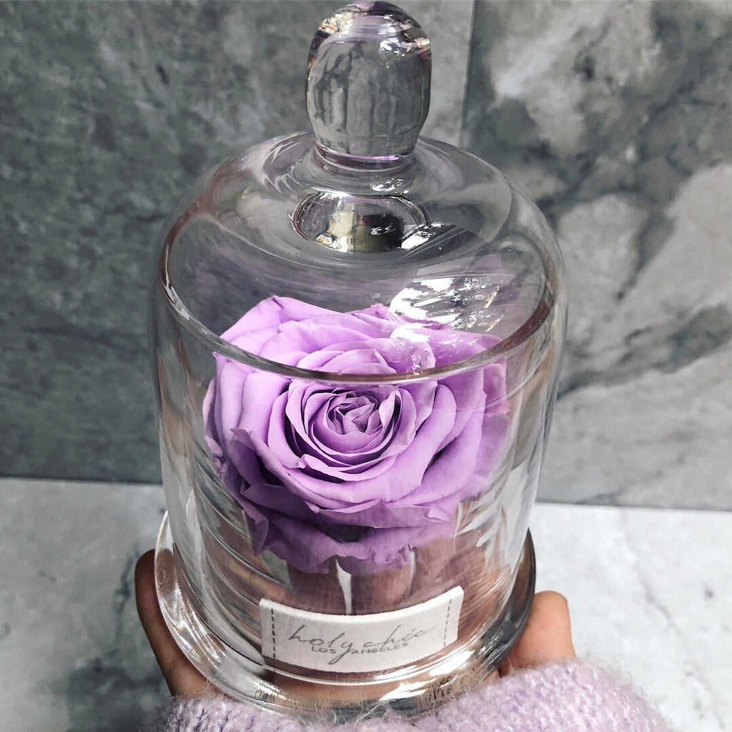 Preserved rose in a glass cup with a glass lid