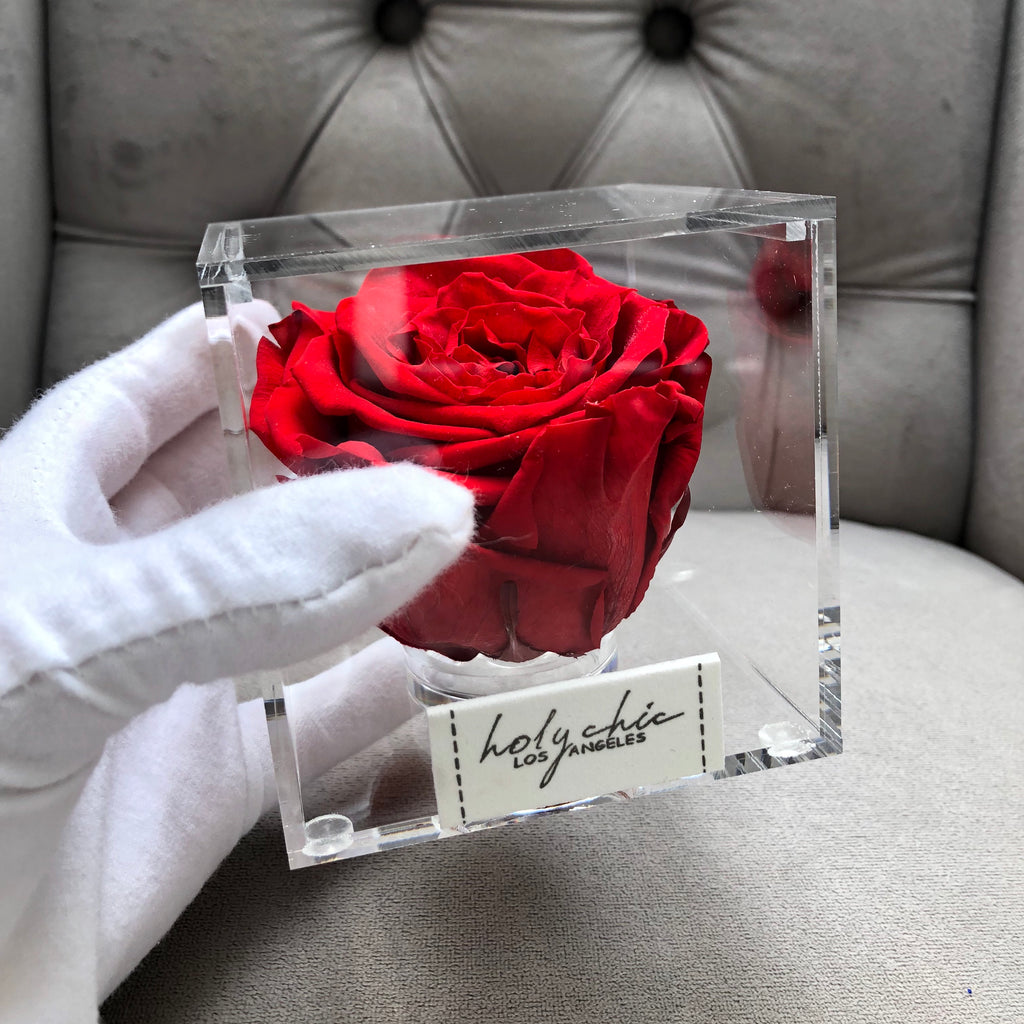 Preserved rose in a in transparent acrylic square box