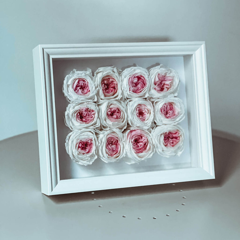 Garden Rose Shadow Box