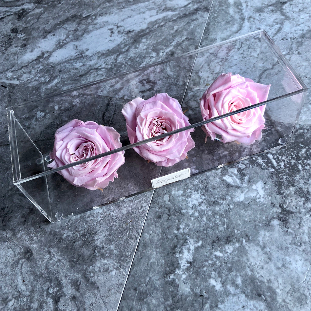 Preserved roses in a in transparent acrylic rectangular box with a lid on top