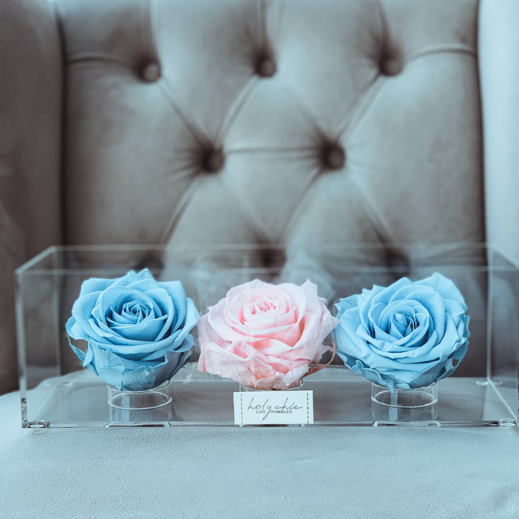 Pret-A-Porter Trio with Pink and Light Blue roses
