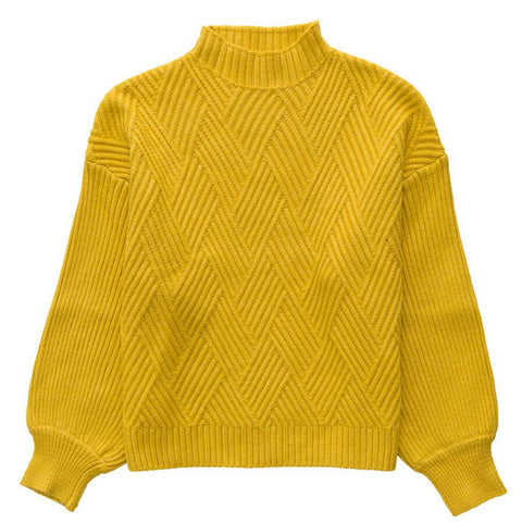 Knitted Slim Pullover Women Turtleneck Knitted Sweater Shirt Female AHalf Sleeve Tops - Shop IB