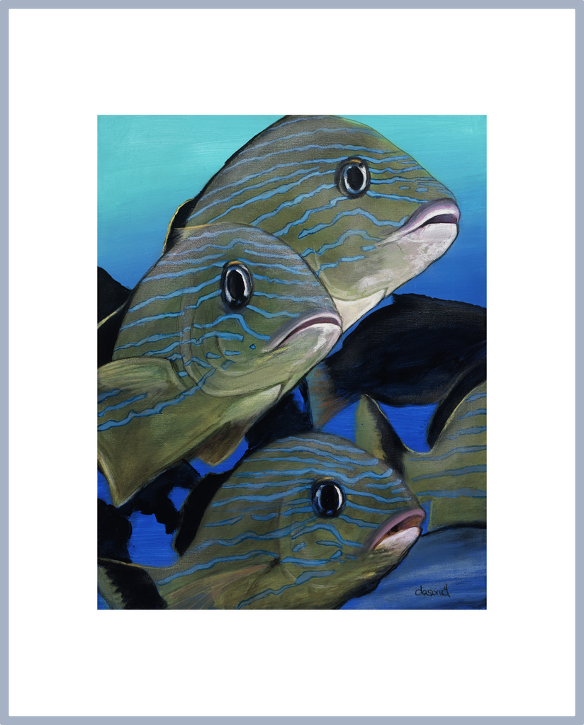 "WAJJ Portrait Print ""Going to School"" (school of fish) - World Art by Jason Juranek. Full Color Giclée Print"