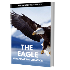 The Eagle Ebook
