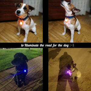 Glowing Pendant Necklace for Dogs Offer