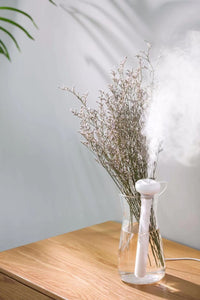 Ultimate Portable Humidifier