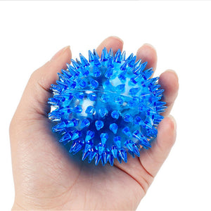 Hedgehog Rubber Ball for Dogs Offer
