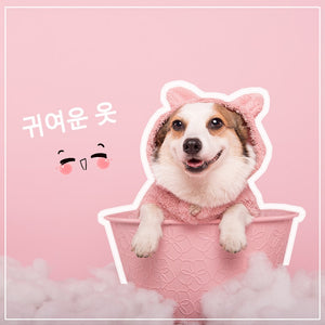 Cute Dog Hoodie for Winter Offer