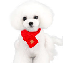 Load image into Gallery viewer, Dog Scarf Offer