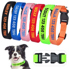 Load image into Gallery viewer, Custom Pet Collar Offer