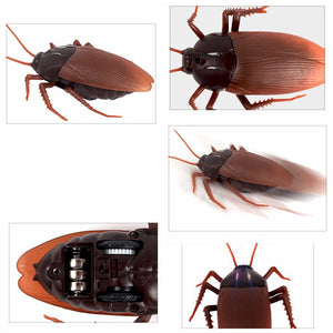 Remote Control Insect