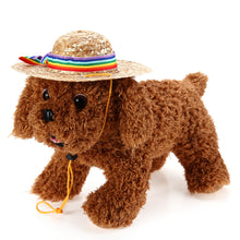 Load image into Gallery viewer, Summer Dog Cap