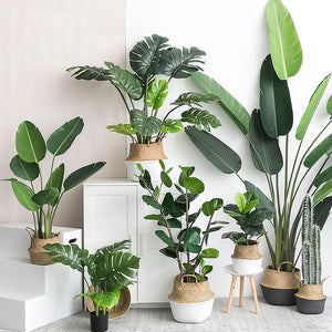 Artificial Plants Mexican Decoration Offer