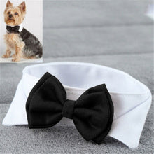 Load image into Gallery viewer, Pet Bow Tie-Collar Offer