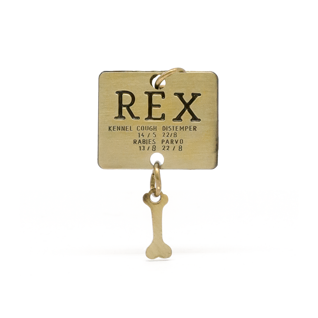 Rex (Isle of Dogs) engraved pin