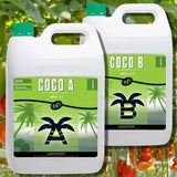 Coco A&B Nutrients
