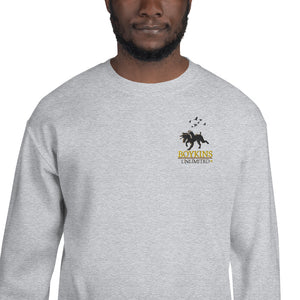 Embroidered - Boykins Unlimited - Unisex Sweatshirt