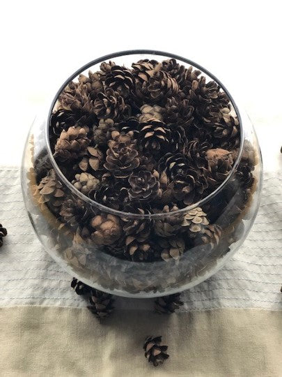 What to do with miniature pine cones?