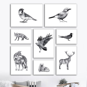Black White Eagle Crow Bird Fox Deer Wolf Canvas Painting