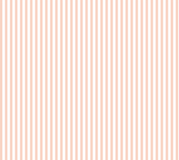 Stripes in Blush - Weave & Woven