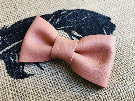 Collar and Bowtie for animals
