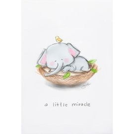 A Little Miracle, Baby Elephant