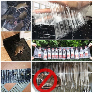 1.2m Mice Mouse Rodent Glue Traps Board Super Sticky Rat Snake Bugs Board Household - ShopeeShipee