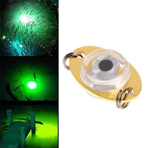 1 pcs LED Underwater Deep Drop Eye Lure Fish Lure Flashing Lamp Light 1 Pcs For Newest Fishing tool High Quality - ShopeeShipee