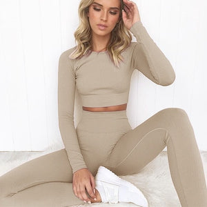 2 Piece Set Women Ribbed Seamless Long Sleeve Yoga Sets Workout Clothes for Women High Waist Sports Legging Long Sleeve Top - ShopeeShipee