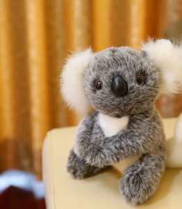 Cute koala doll - ShopeeShipee
