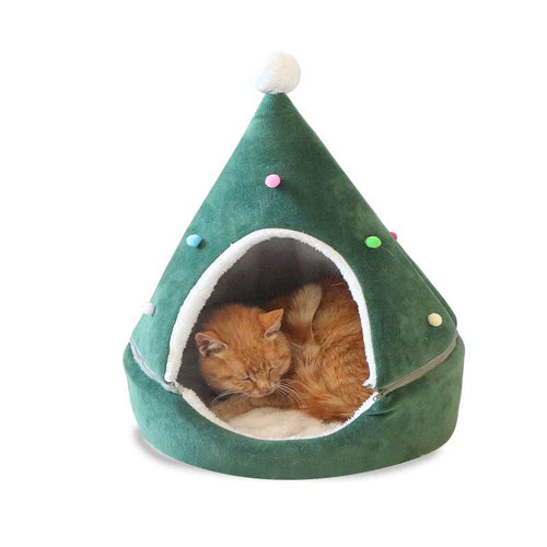 Winter cat litter Christmas pet