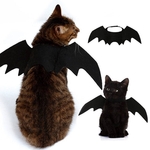 Cute Halloween Cat Costume Small Pet Cat Bat Wings Halloween Cat Wings Hallowen Cat Accessories 2018 Halloween Decorations - ShopeeShipee