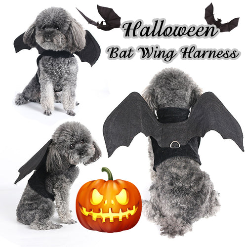 Halloween Bat Wing Dog Harness for Halloween Party Dog Costume Cosplay Vest Harnesses For Dogs Funny Pet Products Accessories - ShopeeShipee