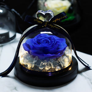 Preserved Rose In Flask LED Glass Dome Valentines Day Gift Christmas present Real Rose Beauty and The Beast Mother's Day Gift