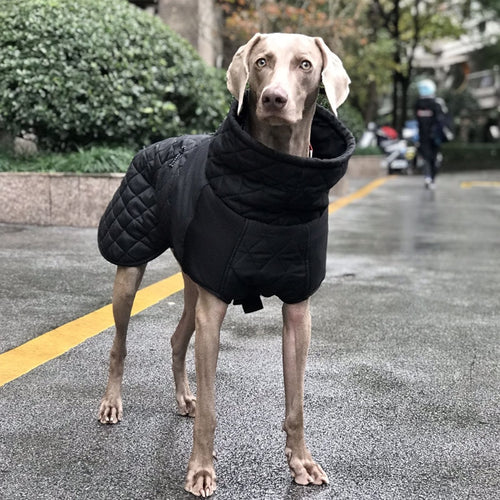 Waterproof Dog Clothes for Large Dogs Winter Warm Big Dog Jackets Padded Fleece Pet Coat Safety Reflective Design Dog Clothing - ShopeeShipee