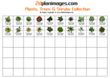 Plants, Trees & Shrubs Collection 4, top down view, overhead view, 2d colour floor plan, 2d plan images, isolated background